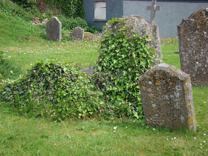 Ireland Graves